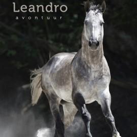Avonturenroman Leandro (2013)
