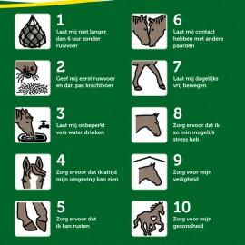 10 geboden paard – Dierenbescherming & KPW (2015 & 2016)