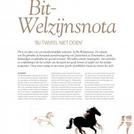 Welzijnsnota (Bit)